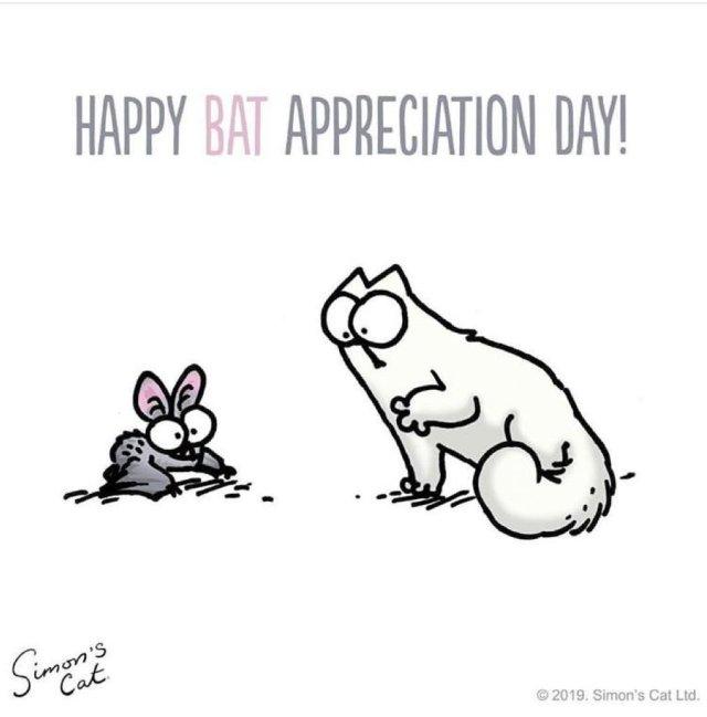 Happy Bat Appreciation Day - Simon's Cat